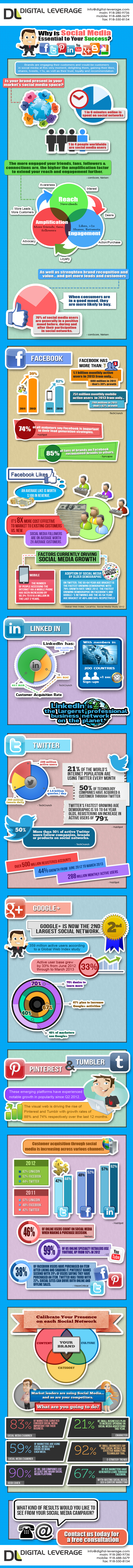 Digital-Leverage.com-Social-Media-Optimization-Infographics-2013